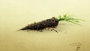 bio-suisse-earthy-veggies_carrot